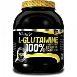 L-Glutamine BioTech USA 240...