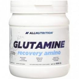 Glutamine Recovery Amino 500 г