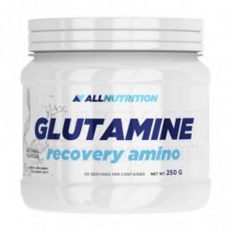 Glutamine Recovery Amino 250 г