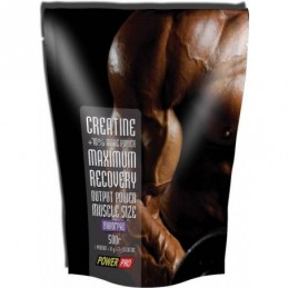 Creatine Power Pro 500 г...