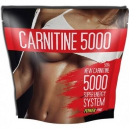 Carnitine 5000 500 г